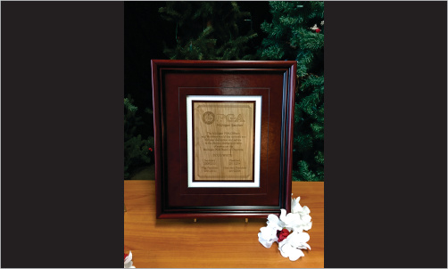 Framed Award with Wood and Leather2_Website Image