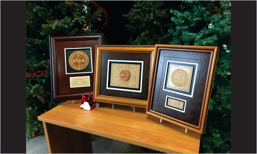 Framed Awards Wood Grouping3_Website Image
