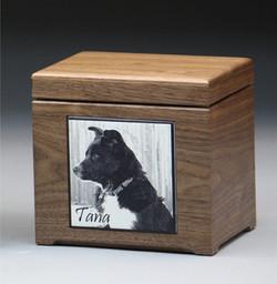 Memory Box_MBUS