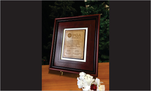 Framed Award with Wood and Leather_Website Image