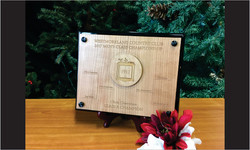 Stand-Out Award with Wood_1 plate_Website Image