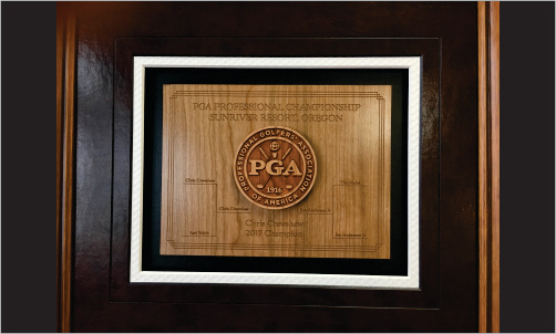 Framed Award with 3d Logo and Leather CloseUp_Website Image