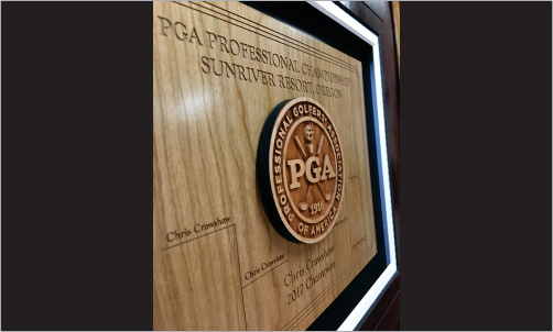 Framed Award with 3d Wood Logo CloseUp2_Website Image