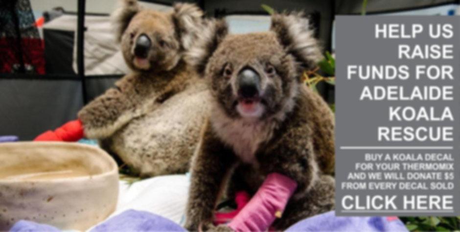 Koala Fund Raiser7.jpg