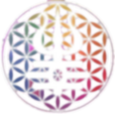 Logo do Instituto de Desenvolvimeno da Consciência Holística