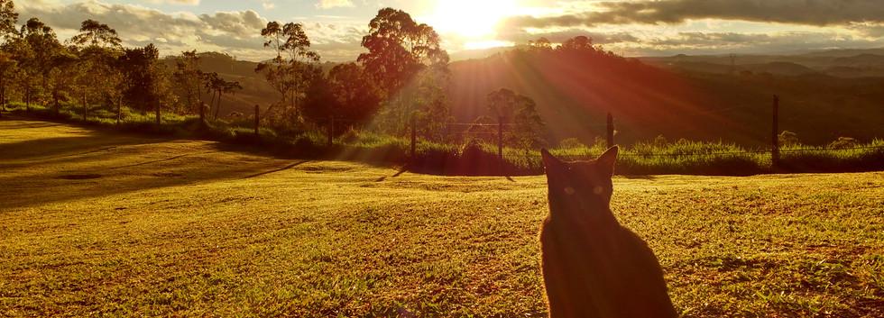 Pôr do Sol de Guararema visto a partir da Sociedade Brasileira de Yoga Integral - sbyi