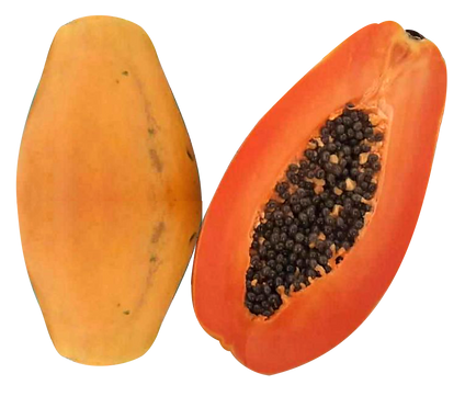 papaya01_edited.png