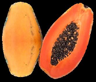 papaya01_edited_edited.png