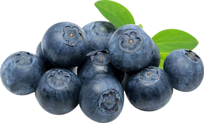 blueberries01.png