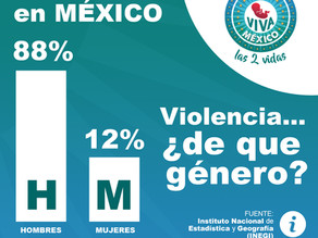 ¿Homicidios vs Feminicidios?