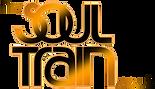 SoulTrain Logo.png