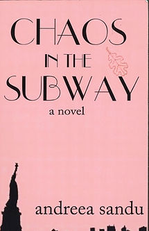 Chaos in the Subway Cover.jpg