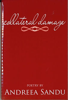 Collateral Damage Cover.jpg