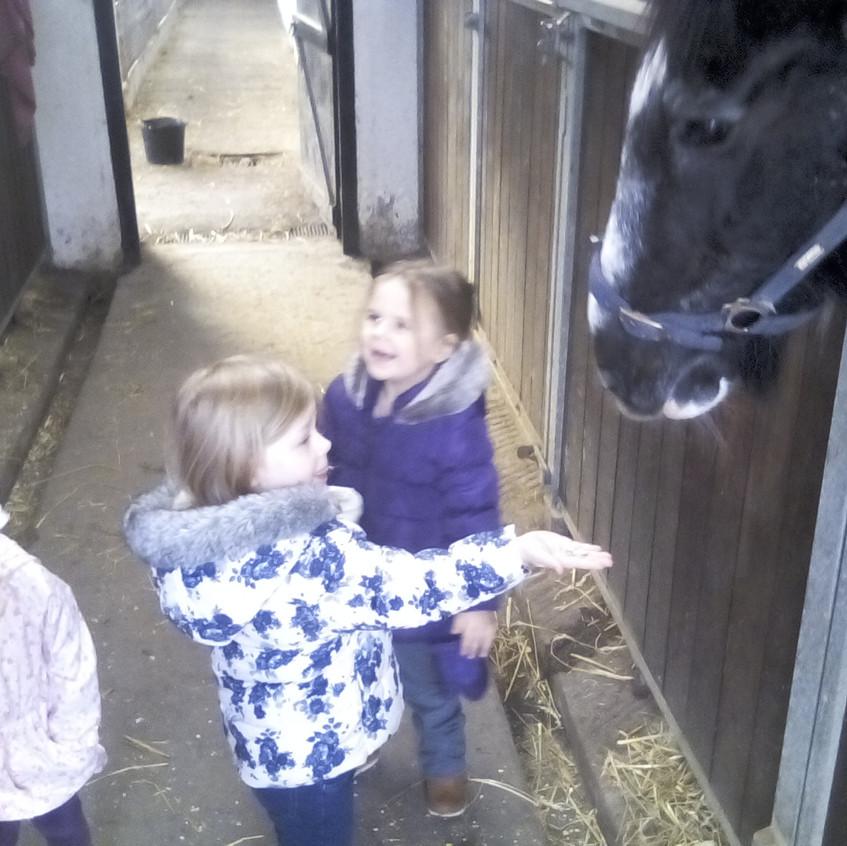 Easterside Farm Trip (3)