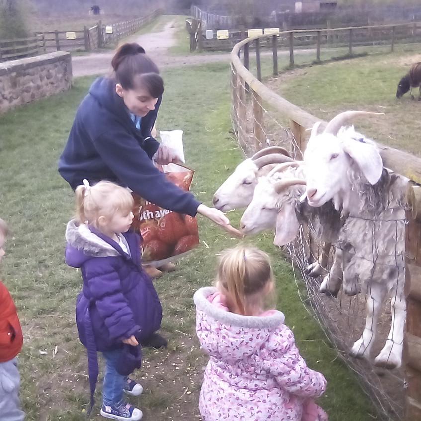 Easterside Farm Trip (11)