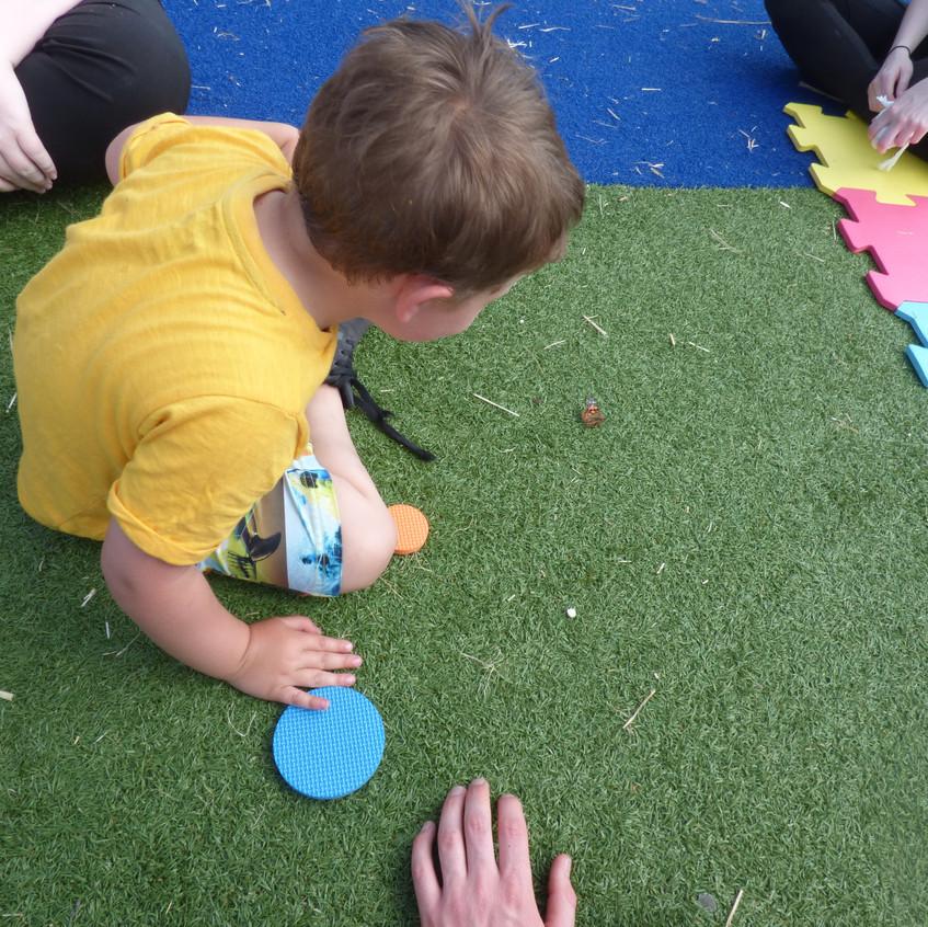 Rosedene Hemlington Initiative Centre Butterfly (12)