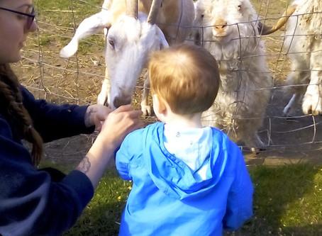 Easterside visit the Farm!