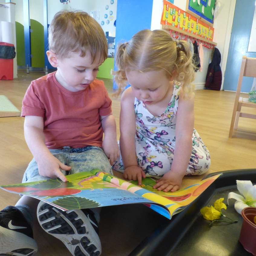 Rosedene Hemlington Initiative Centre Butterfly life (28)