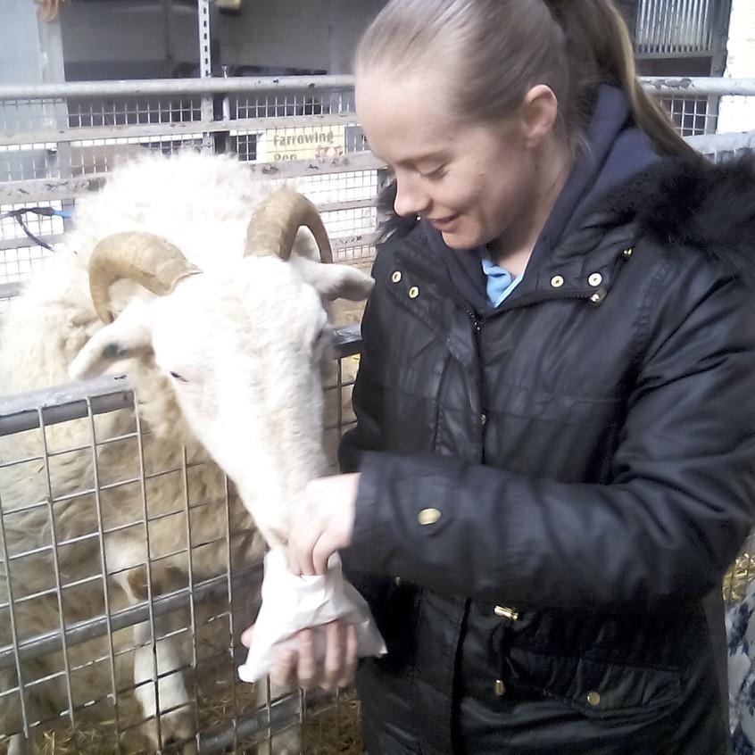 Easterside Farm Trip (1)