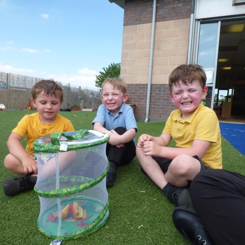 Rosedene Hemlington Initiative Centre Butterfly (3)