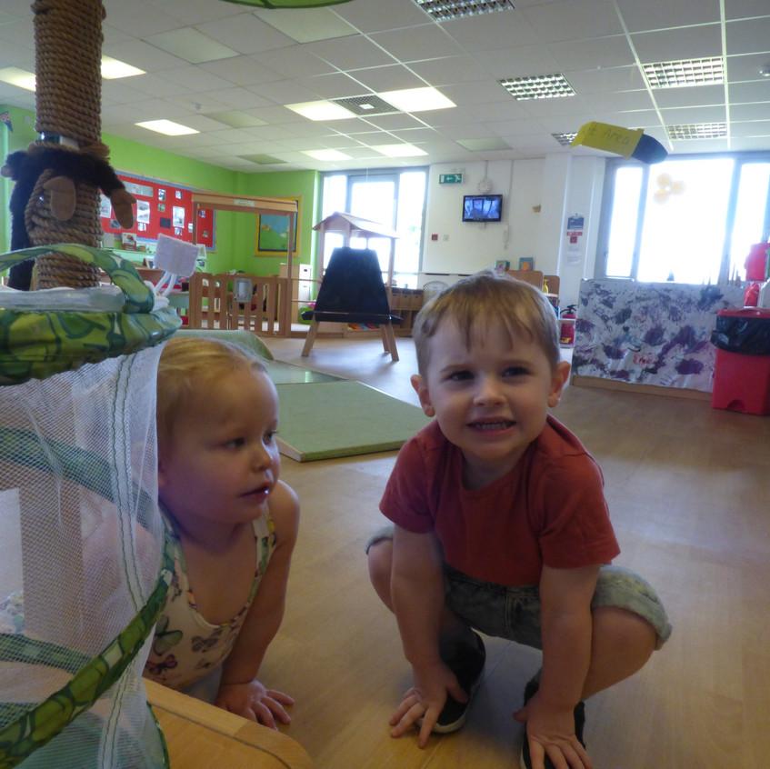 Rosedene Hemlington Initiative Centre Butterfly life (12)
