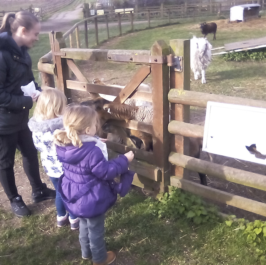 Easterside Farm Trip (5)