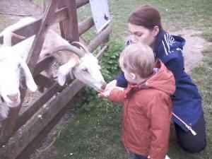 Easterside Farm Trip (35)