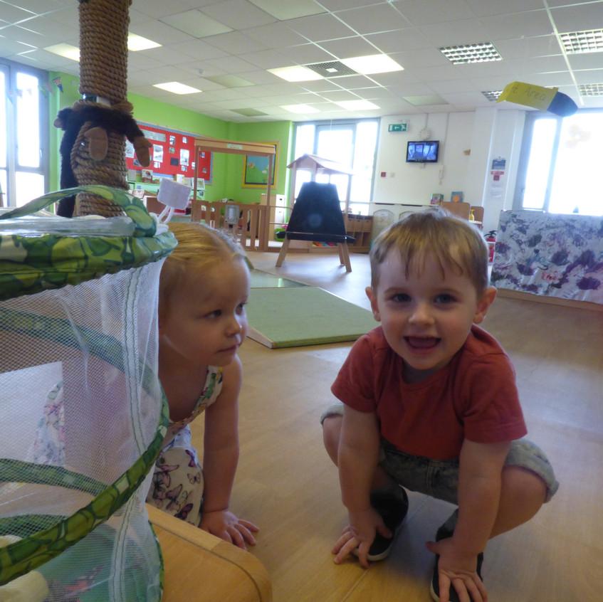 Rosedene Hemlington Initiative Centre Butterfly life (14)