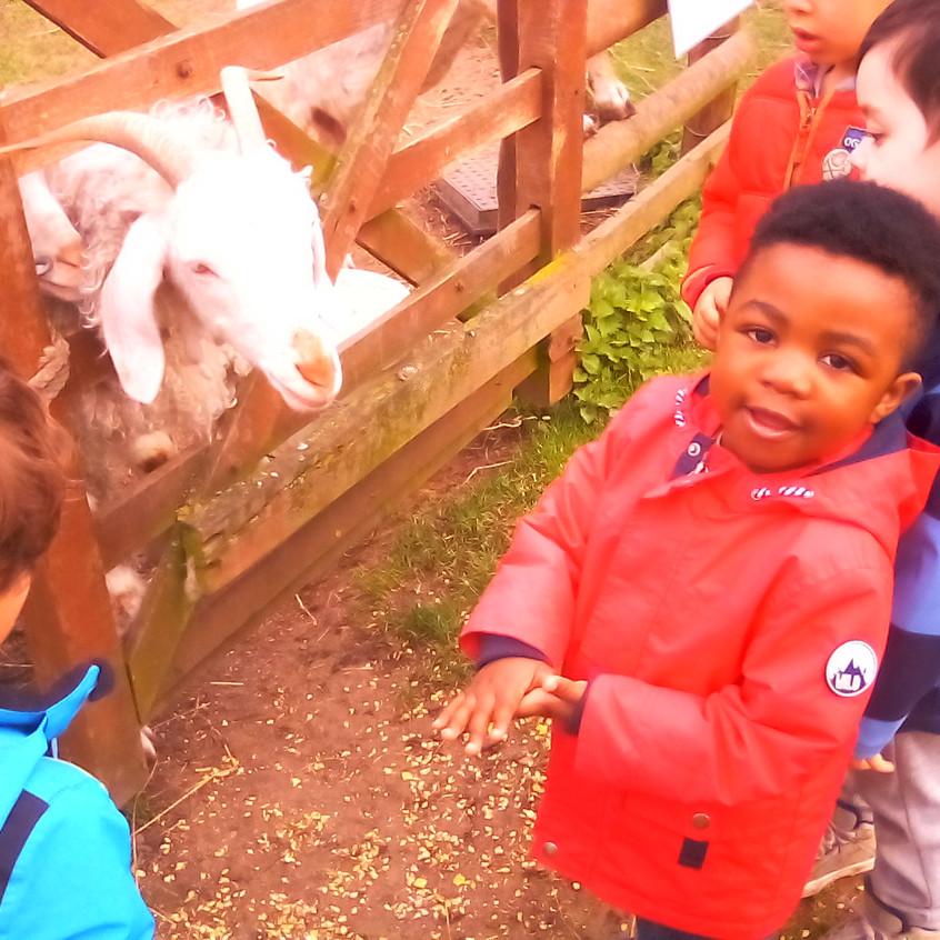 Easterside Farm Trip (17)