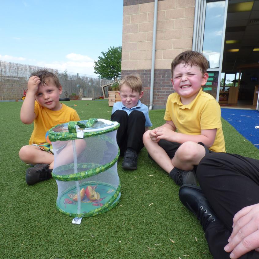 Rosedene Hemlington Initiative Centre Butterfly (5)