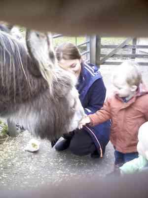 Easterside Farm Trip (33)