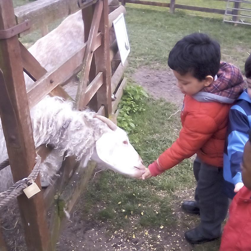 Easterside Farm Trip (16)