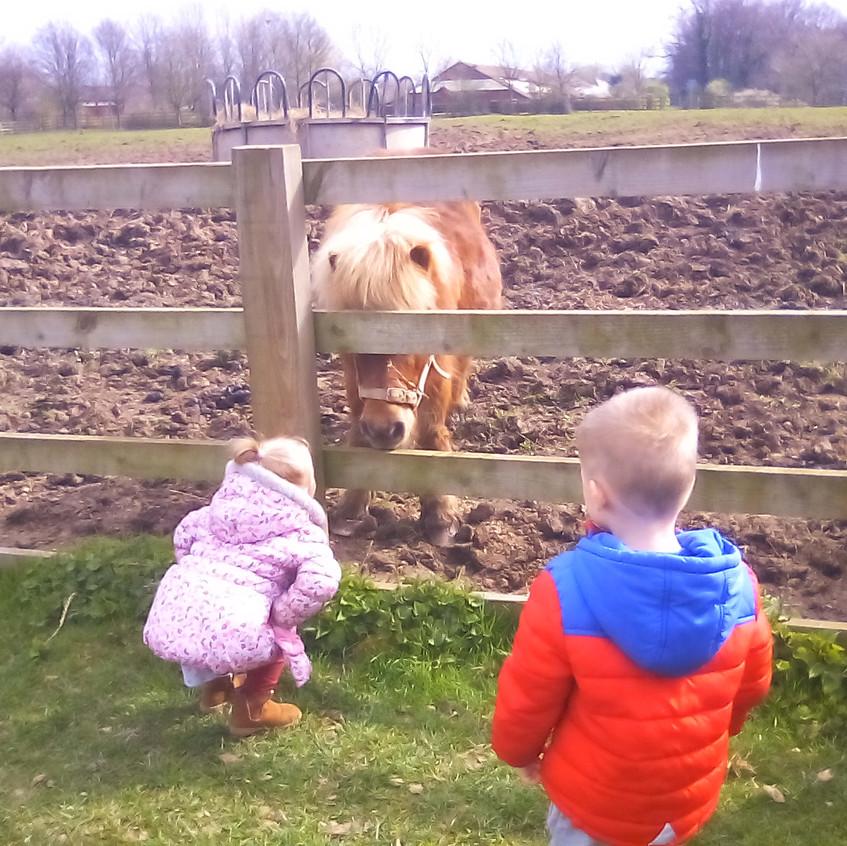 Easterside Farm Trip (12)