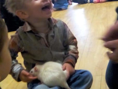 Hemlington Children's Centre learns about mini beasts