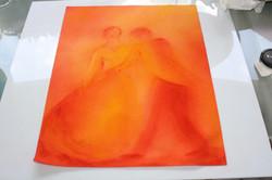 Découverte de l'orange