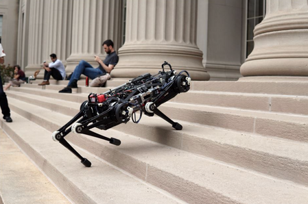 Why this blind, catlike robot could transform search and rescue