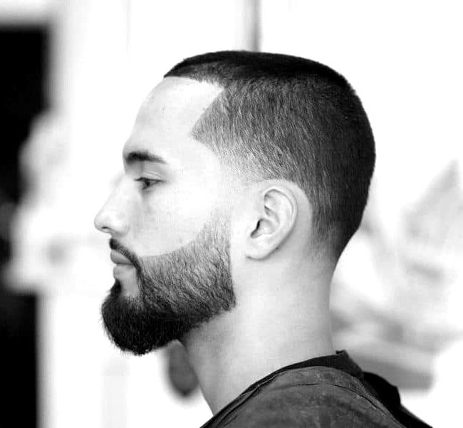 Clipper (ONLY) Haircut