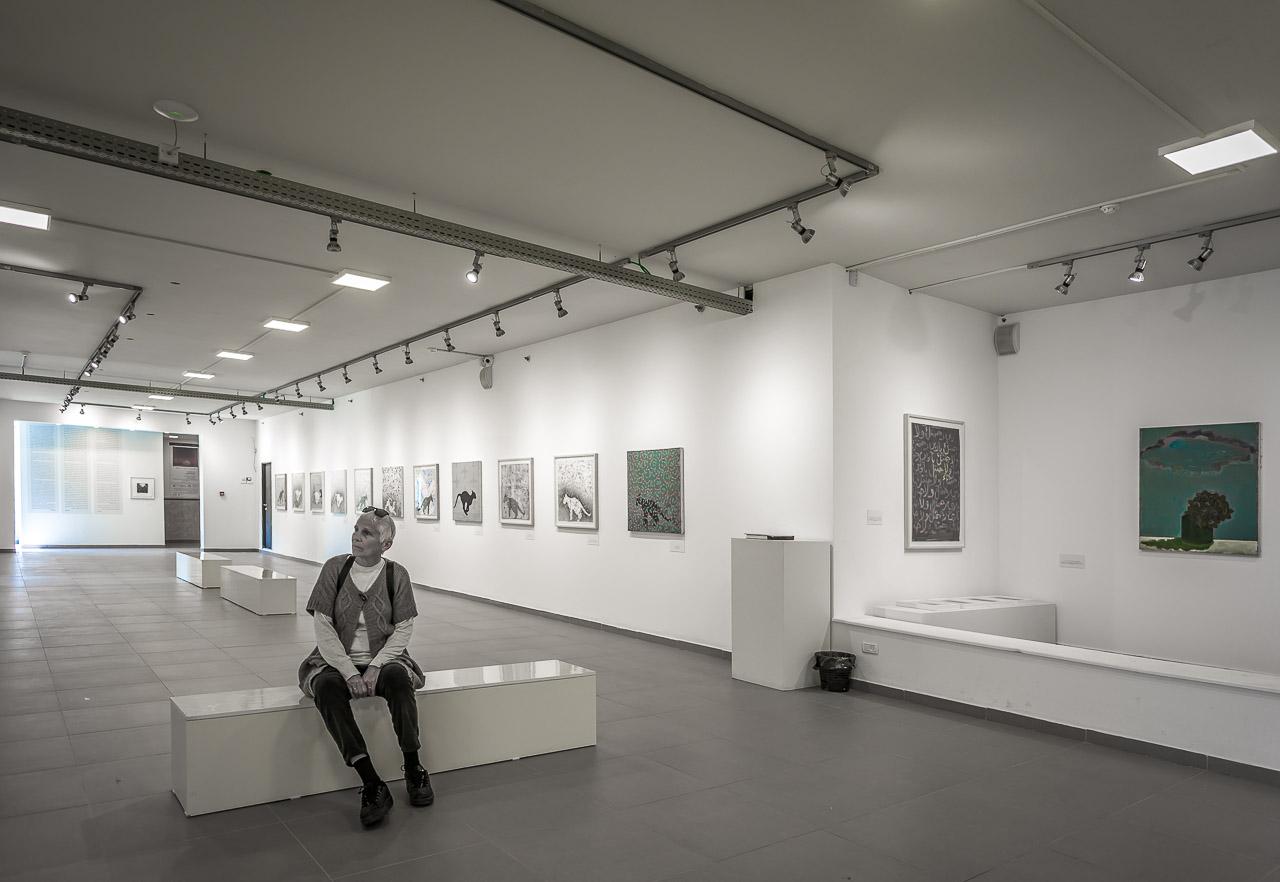 Umm el-fahem Gallery