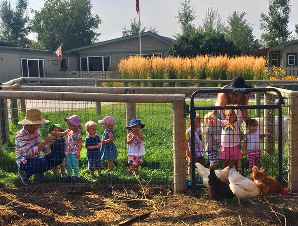 Toddlers feeding our chickens