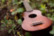 Full String Ukulele Restringing Service at AH Music, Grantham | Ukulele Services