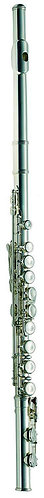 Ashton FL10 Flute Outfit: Silver Plated