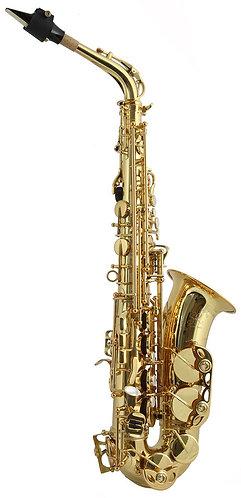 Trevor James SR Alto Saxophone Outfit: Gold Lacquer