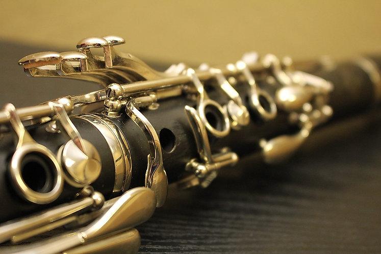 Alto Clarinet Check-over