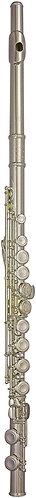 Trevor James 10X Flute Outfit: CS 925 Silver Lip Plate & Riser