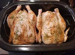 roaster chickens