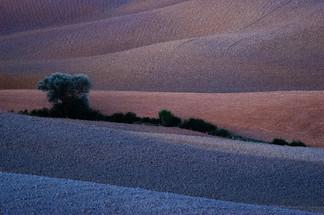 Crete de Sienne - Italie.