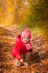 La récolte de feuilles mortes...et de petits cailloux.
