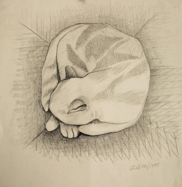 'Honey asleep on the chair' Pencil on paper 21x24cm.