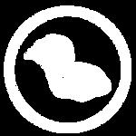 Noctua Soap Co Fountain of Youth Logo