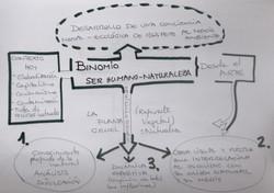 esquema proceso de trabajo